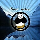 Kung fu panda for iphone!! by yossi rabinovich