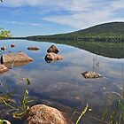 Eagle Lake, Acadia Nat Park by Michele Conner