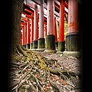 Fushimi Inari Shrine, Kyoto, Japan,  iphone 4 4s, iPhone 3Gs, iPod Touch 4g case by lapart