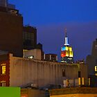 NYC Summer Night by LariElka