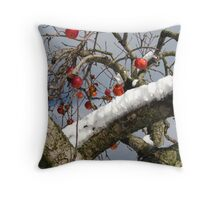 Bird Beaten Leftovers Hang on the Old Apple Tree Throw Pillow