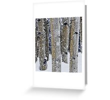 Gently Falling Snow Among the Aspens Greeting Card