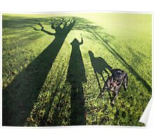 My dog filby in the Park Poster