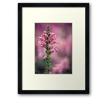 Pinkalicious Framed Print