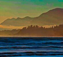 Misty Beach by Don Schwartz
