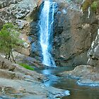 Cedar Creek Waterfalls by Penny Smith