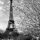 BW France Paris Eiffel tour 1970s by blackwhitephoto