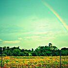 Rainbow by Freddie Meagher