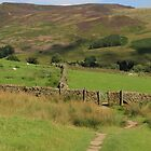 Pennine Way towards Edale by Tom Curtis