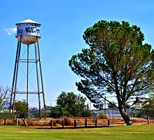 Las Cruces Water Tower by Sheryl Gerhard