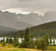 Colorado Rocky Mountain Summer Rainy View by Bo Insogna