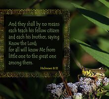 Hebrews 8:11 ~ All will know Me by Robin Clifton