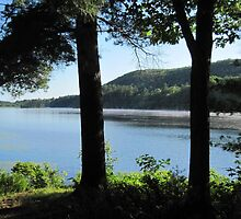 Walker Pond by Ray Vaughan