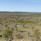 Riversleigh Fossil Field Panorama, Queensland by Adrian Paul