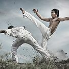 Capoeira fighter by ferli