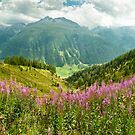 Stunning Switzerland by UniSoul
