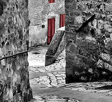 Down a Winding Lane-Petrolo, Italy by Deborah Downes