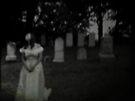 The Bride of Twilight II by gjameswyrick