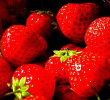Kent Strawberry  by Barnbk02