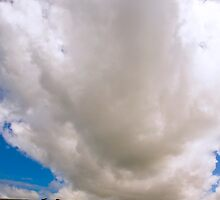 big cloud, small cows. by imagesbyhanson