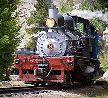 Steam Engine No. 9 (Color) by Joey Bouchard Photography