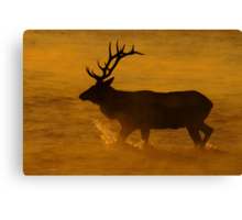 A Steamy Sunrise Canvas Print