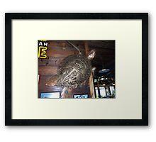 Metal Art - Turtle in Fisherman's Whorf in Galveston Texas Framed Print