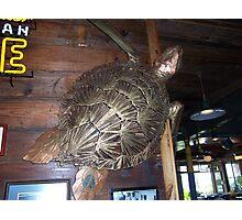 Metal Art - Turtle in Fisherman's Whorf in Galveston Texas Photographic Print