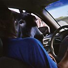 Donkey love through the car window in South Dakota by aweddingtheme