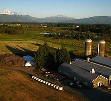 North American Farmland, Lynden, WA 2012 by J.D. Grubb