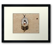 shouting seagull in Mexico Framed Print