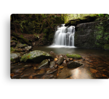 Strickland Falls Canvas Print