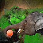 elephant talk in Colour by David Kessler