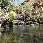 Water hole of Galvan's Gorge, Kimberley by DianneLac