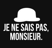 Je ne sais pas, Monsieur. 2 by VanPerriStudios