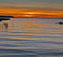Buck Lake Sunset by Keri Harrish