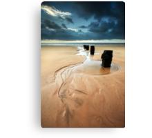 Reach for the Sea Canvas Print