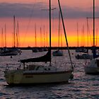 Sailboats in Chicago by Sven Brogren