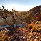 Early Morning Glen Helen Gorge by Bill  Robinson