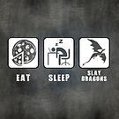 Eat, Sleep, Slay Dragons - Landscape Poster by thehookshot