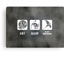 Eat, Sleep, Slay Dragons - Landscape Poster Metal Print