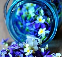 Jar of Flowers by Serdd