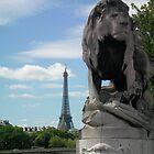 Lion in Paris by dlieb