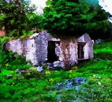 Ruined Cottage, Royal Oak - Carlow  by Carlow98
