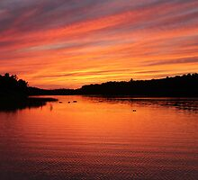 Until Tomorrow - Sunset by Debbie Oppermann