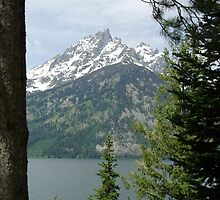 Grand Teton - Jenny Lake by jolynncreations