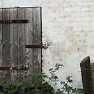 Barn door by Heather Thorsen