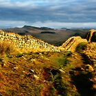 Hadrian's Wall on Hotbank Crag - C11 by Joan Thirlaway