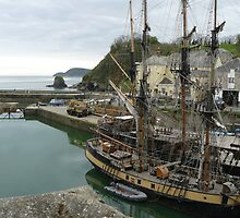 Tall ship in Charlestown Harbour by davidwatterson