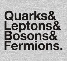Quarks & Leptons & Bosons & Fermions. - black design by M Dean Jones
